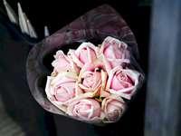 Bukiet różowej róży