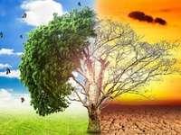 Wpływ środowiska - Działalność uzupełniająca dyscypliny Geografia 3. rok EF