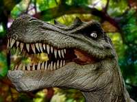 Dinosaurus - T-rex dinosaurus hoofd