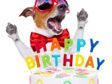 Wszystkiego najlepszego z okazji urodzin - Życzę ci wszystkiego najlepszego
