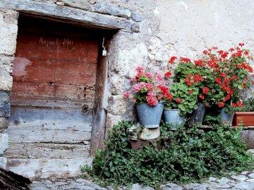 stary dom - wejście do domu - kwiaty --------