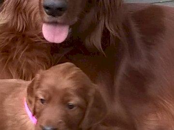 Madre y bebé - Korina y su bebé.