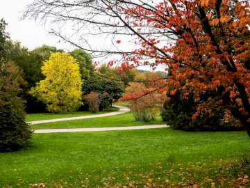 Grutt Park - autumn colors - a walk on the winding path. A close up of a lush green park.
