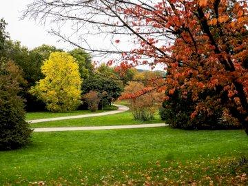 Парк Grutt - есенни цветове - разходка по криволичещата пътека. Зат�