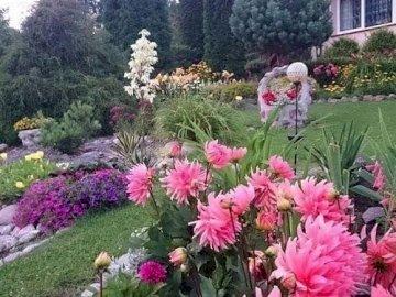 Kwiaty w przydomowy ogrodzie. - Układanka: kwiaty w przydomowym ogrodzie.