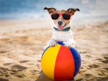 Lato na plaży - Zbliża się lato, dlatego ruszamy na plażę!