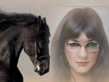 czarny koń - Izabela w tle karego konia.