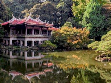 Japoński ogród - Magiczny japoński ogród