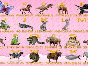 Quebra cabeça - Alfabeto de Animais - Quebra cabeça de animais