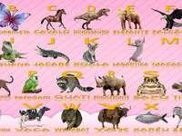 Quebra cabeça - Alfabeto de Animais