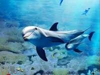 Widoczek - Podwodny Świat