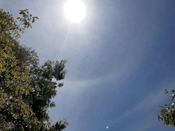 alone intorno al sole - Maggio 2020 alone intorno al sole