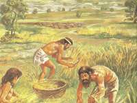 Neolithische Landwirtschaft