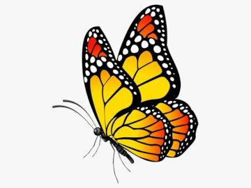 Motyl Fifi - Ułóż puzzle. Powstanie piękny motyl.