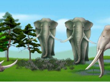 Puzzle ze zwierzętami - Układanka z nosorożcem i słoniami