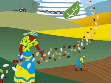 Igazságosság és élelmezésbiztonság mindenki számára - Próbálja ki a kezét a puzzle összerakásában ?: Equity & #FoodSecurity for ALL?