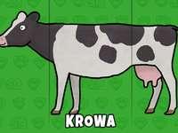 Αγελάδα - αγελάδα σε πράσινο φόντο