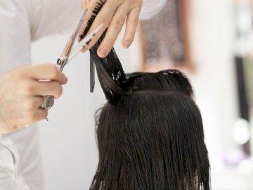 Hair cutting - Hairdresser cutting hair