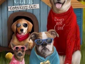 Des chiens cool - Des chiens avec leurs lunettes sont cool