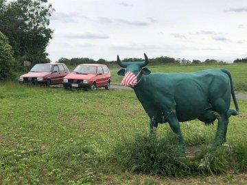 Οφειλόμενο Uno σε paese - 2 fiat και μια αγελάδα με μάσκα προσώπου