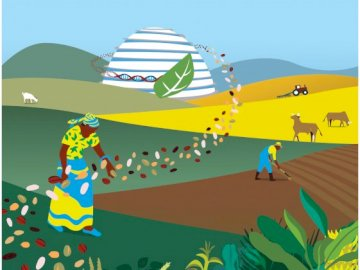 Equity & Food Security for All - Try your hand at putting this puzzle together ?: Equity & #FoodSecurity for ALL ?