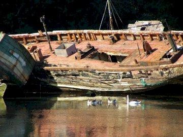 Stare łodzie - Stare łodzie porzucone przy brzegu