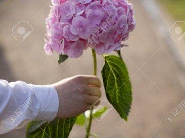 Kwiatek... - Proszę.........................
