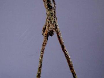l'homme qui marche - l'homme qui marche, d'Alberto Giacometti