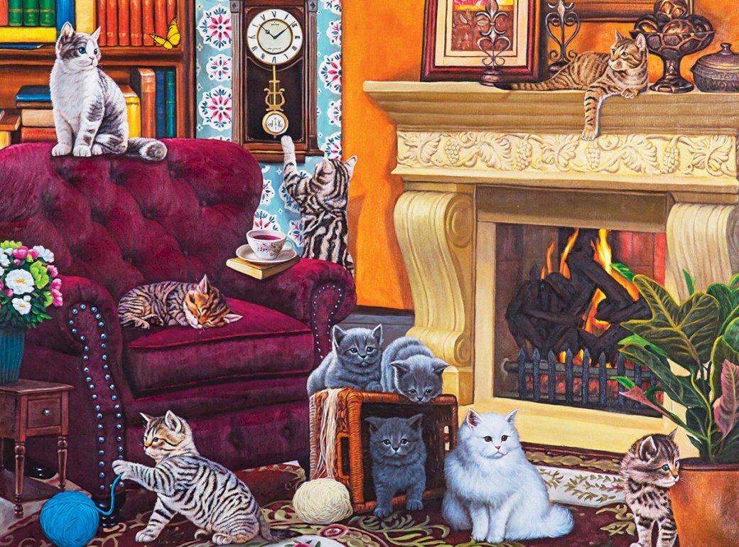Koty wszędzie - koty domowce na fotelu (12×8)