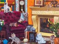 Gatos em todo lugar - gatos domésticos em uma poltrona
