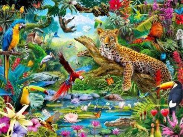 Leopardendschungel - Dschungeltiere, Aussicht