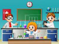 Biology and chemistry laboratory - Carry out the following activity.