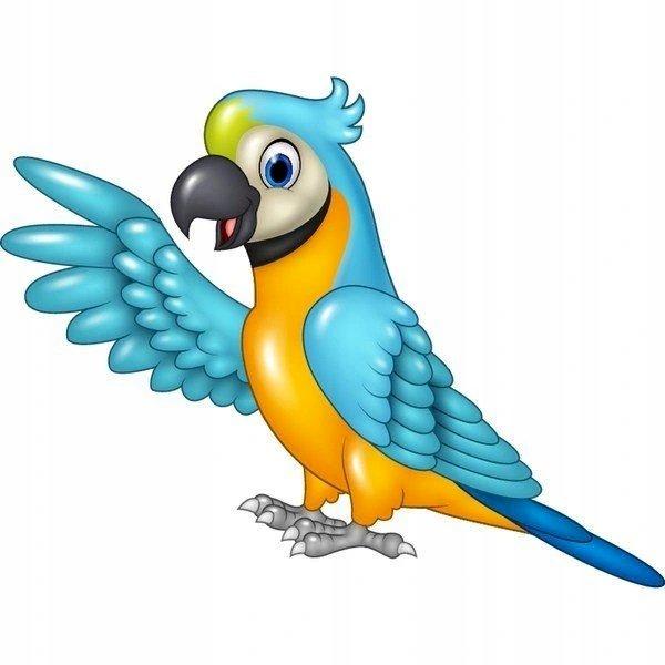 Ara papoušek - extrémně barevné papoušek papoušek kreslení (4×4)