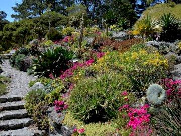 malerische Aussicht - Pflanzenreich des Botanischen Gartens