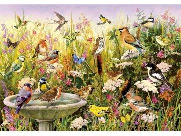 Vogelparadies - Perfekt für den Vogelbeobachter in Ihrem Leben! Die farbenfrohe Szene, die vom Künstler Greg Giord