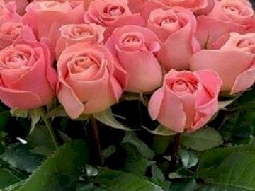 Bukiet  róż . - Bukiet   róż                              .