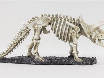 Dinosaurierknochen - Haben Sie einen Paläontologen