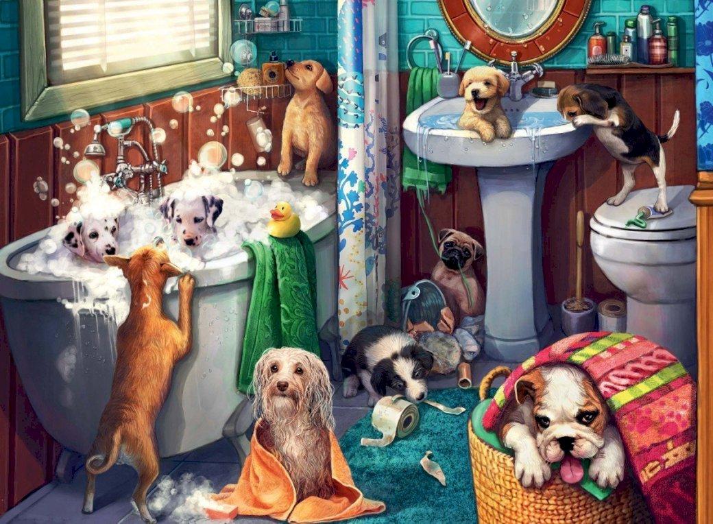 Giochi Di Fare Il Bagno Nella Vasca.Cani Nella Vasca Da Bagno Risolvi I Giochi Puzzle Gratis Presso Puzzle Factory