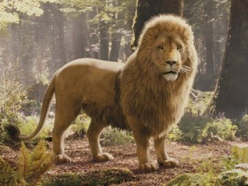 Lion aslan - Tales from Narnia-Aslan :))