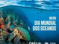 Παγκόσμια Ημέρα των Ωκεανών