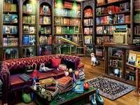 Biblioteca Home
