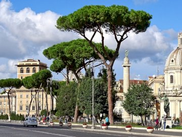 Roman street - sights of the capital of Italy ------