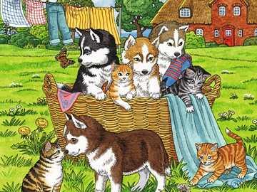 Cute pets. - Puzzle for children: pets.