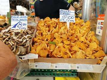 gallos y otros - setas - Market hall en Módena