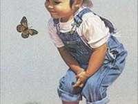 dlouho jsem neviděla motýlka