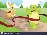The hare and the tortoise - Watch the story and complete the puzzle.