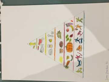 virus en couronne - pyramide de la santé très intéressante, veuillez faire Mme Renata