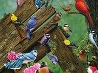 Птици от гората.