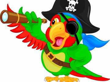LORO PIRATA - Pirate parrot with patch