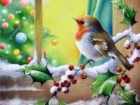 Красива Коледа
